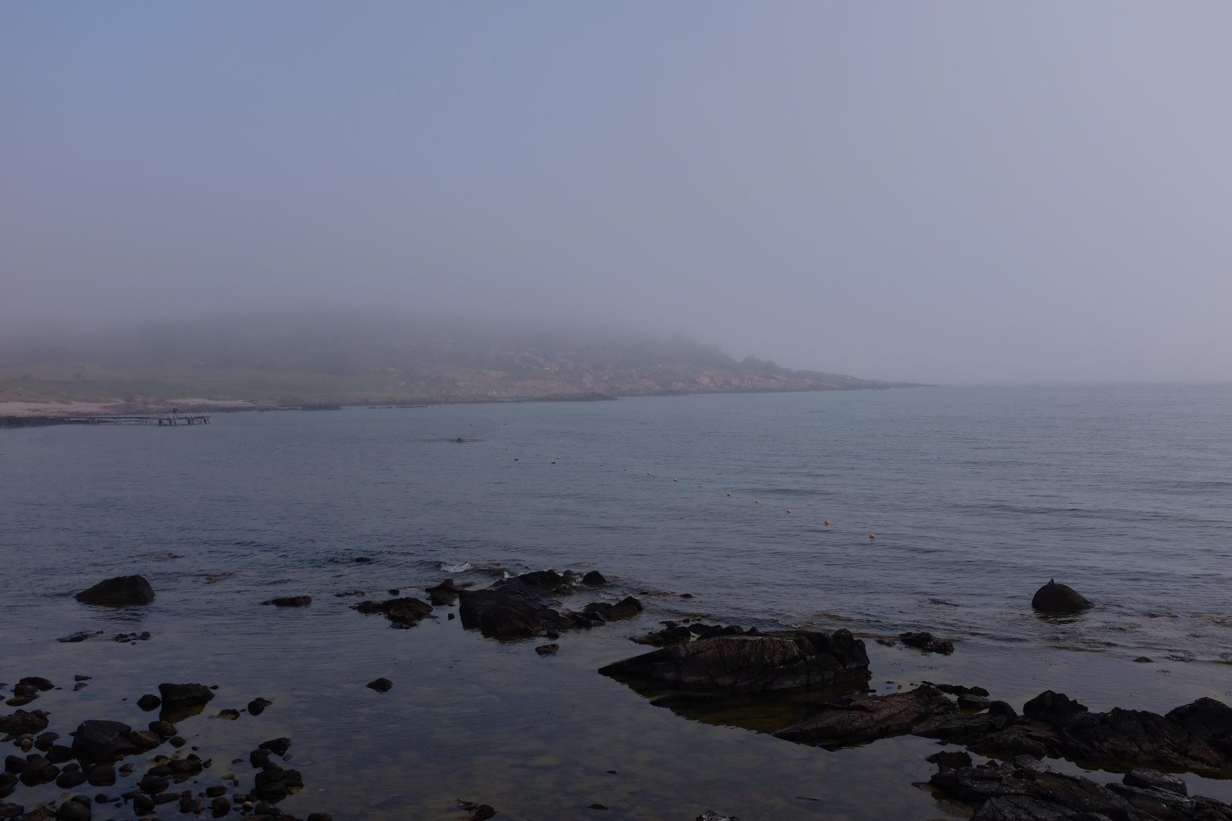 Hammerodde i tåge