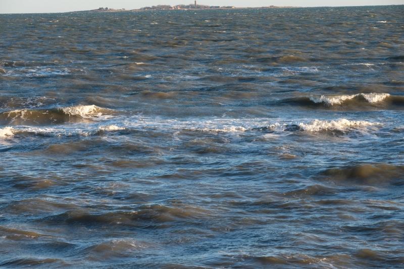 Smult vande med Hirsholmen langt ude